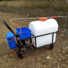 畅销农用电动杀虫机草坪喷雾器果园拉管式打药机