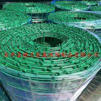德兰养殖绿色铁丝网隔离围栏厂家直销果园防护养鸡养鸭浸塑丝径2.0mm波浪荷兰网护栏