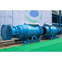 泵站改造潜水轴流泵型号