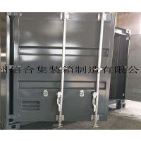 非标集装箱门 订做 集装箱门厂家订做批发 集装箱门板 /质优价廉