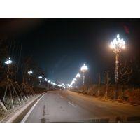 供应广顺牌杜鹃花型LED路灯(GS-YND1500)