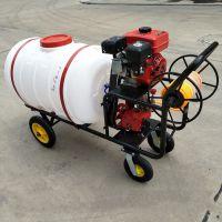普航自走式喷雾器 7米喷杆高压打药机 400升的打药机价格是多少