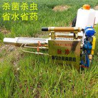 贵州热卖 果园大棚专用弥雾机 水稻田消毒防疫打药机