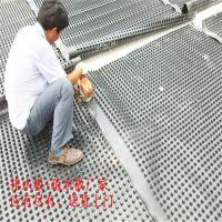 枣庄&青岛20厚%25厚%30厚HDPE排水板(包送货)