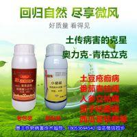 桃树褐斑病防治方案有机农药靓果安