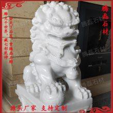 惠安石雕狮子 银行广场石狮子摆放 优质花岗岩雕刻