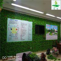 背景墙绿值墙【时宽】人造仿真植物塑料假草坪,围栏店铺酒吧墙体专用小尤加利