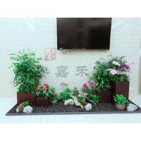 西安花卉租赁、西安办公室绿植租摆 就找西安嘉禾苗圃