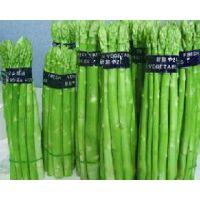 供应京笋2号-国产芦笋种子,北京供应商