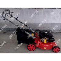 手推齐茬汽油动力剪草机 带集草袋草坪修剪机 润众
