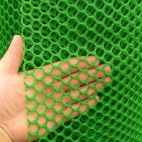 养鸡塑料漏粪网 塑料网格 蘑菇菌类养殖网