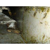 无锡惠山区洛社镇油烟机清洗 承接单位 食堂 酒店 大型油烟机管道清洗 及维修