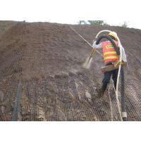 河北厂家供应客土喷播植草用镀锌勾花网护坡喷浆挂网