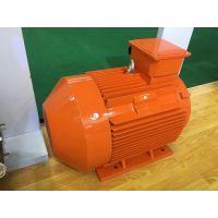 ZYS 系列压缩机专用三相异步电动机ZYS 160L2-2-18.5kW SF=1.2中达电机
