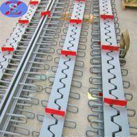 桥梁伸缩缝 梳齿钢板伸缩缝