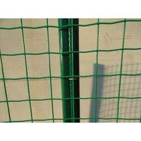 安化县养殖铁丝围栏网厂家批发 护栏网价格 浸塑围栏网