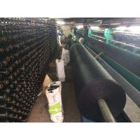 拉丝密目网价格 优质盖土网供应 聚乙烯盖土网