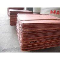厦门紫铜块回收价格,青铜块回收,模具铜回收厂家