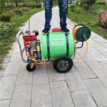 热销旭阳农用160L手推喷雾机 园林用汽油高压杀虫机 养殖用小型清洗机