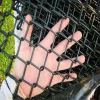 镀锌边坡防护勾花网,河北安平中科边坡防护勾花网