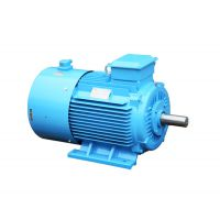 供应《磊泷牌》三相异步电动机 YVF2 75KW-4P 380V/3HZ-100HZ