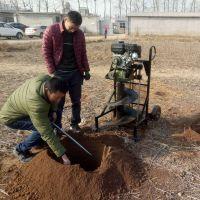 果树移植挖坑机 大棚种植栽桩机 二冲程汽油手提打坑机销售
