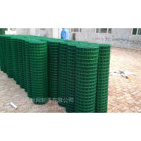 现货供应RA-03型浸塑荷兰网、养殖护栏网、包邮包安装
