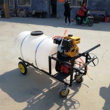 高压远程喷雾器 多功能打药机 圣鲁四冲程果树打药机