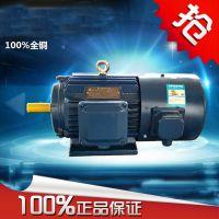 供应河南省变频调速电机Y2VF355L-2-315KW 上海能垦变频调速三相异步电机