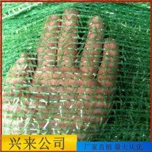 南昌盖土网 盖土网是什么材料 6针防尘网厂家
