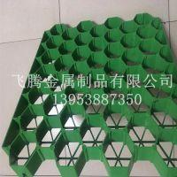 广州植草格,植草格价格,植草格规格,植草格便宜厂家生产供应