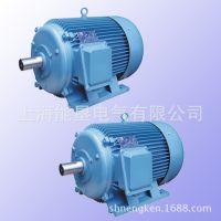 畅销产品YD225M-12/6 12.0/20KW变极多速三相异步电动机 上海能垦双速电机