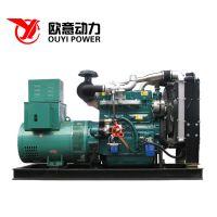 供应潍坊50kw柴油发电机组 可移动式静音发电机组配上海全铜电机