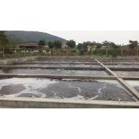 惠州养殖废水处理的特点以及必要性