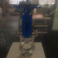 厂家直供不锈钢支耳式刀型闸阀PZ73W-10P手动硬密封304闸阀