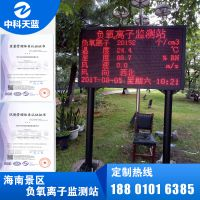 海南省公共资源交易服务中心,海南负氧离子监测站供应商