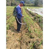 农翔牌背负式草莓根部手动施肥器追肥器 覆膜地膜湿土粘土可用 精准快速 省工省肥 更环保