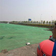 一针半盖土网图片 工地防尘网 盖土用的绿网