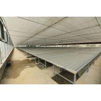 多层立体式的温室自动化移动苗床装置