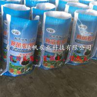 供应蔬菜育苗基质 营养土 有机基质 花卉/蔬菜/盆栽/园艺用营养土