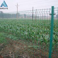 双边丝护栏网效果图_浸塑养殖场铁丝网围栏