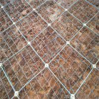 优质柔性防护网供应商@河北缆瑞钢丝绳DO/08/300格栅网SO/2.2/05