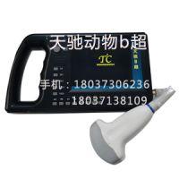 安徽 天驰 专业生产 TC-301 兽用b超 多少钱