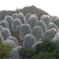 什么是防虫网?云阳县防虫网 的作用有哪些