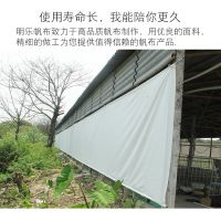 绿色PVC帘布 养殖场卷帘帆布厂 猪舍卷帘雨布厂