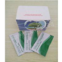 中西供猪瘟病毒抗体快速检测卡/猪病抗体检测卡 型号:YS72-40T库号:M9685