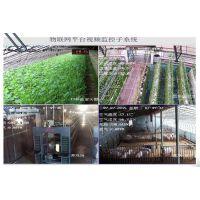 山西运城太阳能温室大棚太阳能温室专业承建厂家