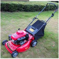 硕阳机械 环境保护小型草坪机