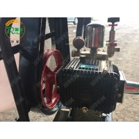 汽油动力喷雾机 润华 果园农林打药机 高压喷雾器