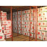秦皇岛市苹果保鲜库厂家建设安徽雪坊制冷设备